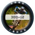 优立德300-12